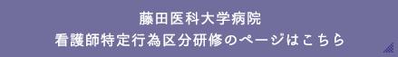 藤田診療看護師(FNP)のページはこちら